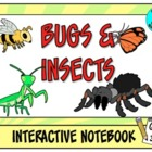 Bugs literacy and math activities