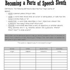 Differentiated Activity:  Parts of Speech and Sentence Types