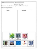 Differentiated Instruction - Living and Nonliving Tiered W
