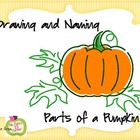 Drawing and Naming  Parts of a Pumpkin