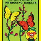 Investigating Intriguing Insects