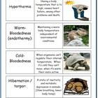 Ecology Flashcards
