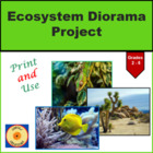 Ecosystem Diorama Project