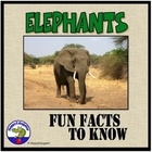 Elephants - Fun Facts About the Life of an Elephant PowerPoint
