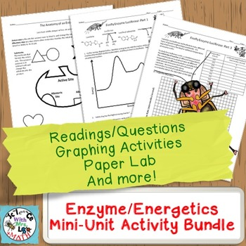 Enzyme Mini-Unit: Worksheets, Graphing Activities, and Paper Substrate Lab
