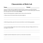 Evolution Characteristics of Birds Diversity Laboratory Le