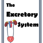 Excretory System Labs and Activities for Middle School