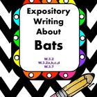 Expository Writing Set for Bats