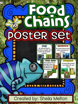 FOOD CHAINS Poster Set / Student Vocabulary Book (15 poste