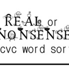 FREE Real & Nonsense cvc Word Sort (B&W)