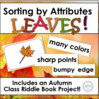 Fall Leaves: Lessons & Materials for Attribute Sorting & A