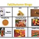 Fall Vocabulary Bingo