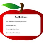 Five Senses Activity Packet - Apple Tasting!
