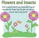 Flowers and Insects Unit