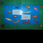 Fluency phrase practice with ocean themed game