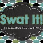 Fly Swatter Review Game - Editable Review Game for ANY Topic