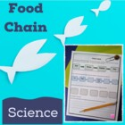 Food Chain Science Worksheet