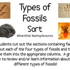 Four Types of Fossils Sort Packet