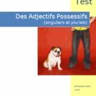 French Quiz - Les Adjectifs Possessifs (Possessive Adjectives)