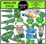 Frog Life Cycle Clip Art Bundle