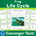 Frog Life Cycle Scavenger Hunt