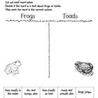 Frog and Toad Comparisons