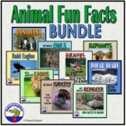 Fun Facts About Owls, Penguins, Polar Bears, Elephants, Li