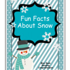Fun Facts About Snow Mini Book