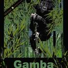 Gamba - An Optimistic Mountain Gorilla ale