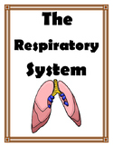 Respiratory System Games and Activities