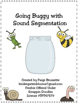 Going Buggy with Sound Segmentation