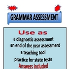 Grammar Assessment
