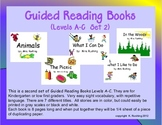 Guided Reading Books (Set 2)