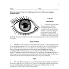 Guided Reading Lesson - Grade 3 -I Can See / Eye See
