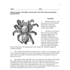 Guided Reading Lesson - Grade 3 -Tarantulas / The Web