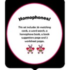 Homophone Activity Set with Bees and  Bears