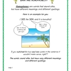 Homophone Lesson & Activity Packet