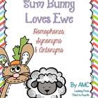 Homophones, Synonyms and Antonyms - Sum Bunny Loves Ewe