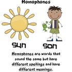 Homophones activity pack