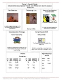 Houghton Mifflin Mini-Focus Wall Theme 9 Weeks 1-3