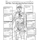 The Human Body Systems # 2