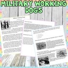 Humane Education: Military Working Dogs