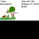 I have, Who has? (ecosystems version) vocabulary review