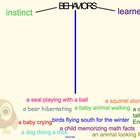 Instinct vs. Learned Behaviors Smartboard Sort