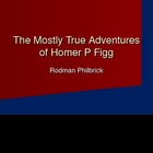 Introduction PowerPoint for Homer P Figg Characters, Setti