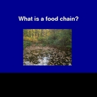 Introduction to Food Chains Powerpoint