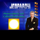 JEOPARDY! Photosynthesis and Cellular Respiration