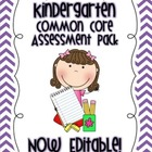 Kindergarten Common Core Assessment Pack (Editable)