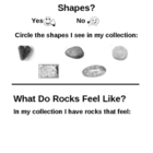 Kindergarten Science: Rockhounds Workbook