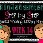 Kindergarten Step by Step Guided Reading Plans: Week 14